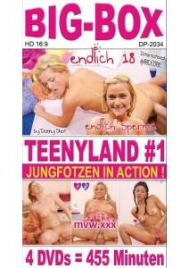 BOX Big-Box Teenyland #01 (4 DVD)