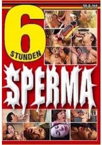 Sperma - 6 Std.